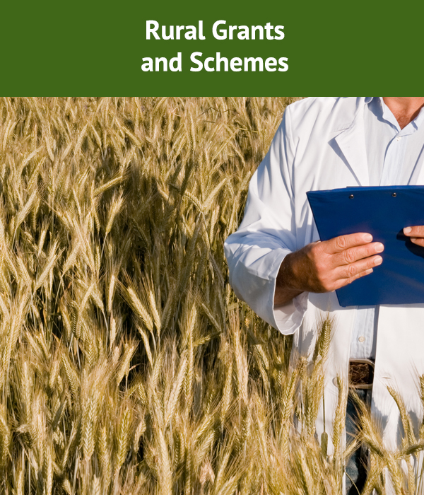 A Summary Of Organic And Other Rural Grants For Farmers